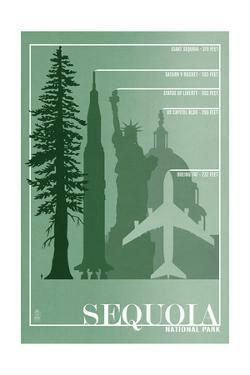 Sequoia National Park - Redwood Relative Sizes by Lantern Press