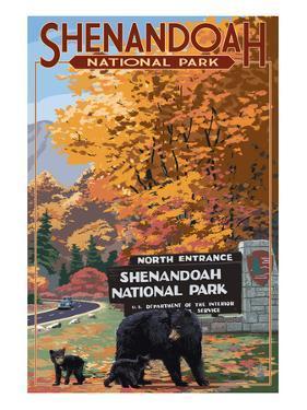 Shenandoah National Park, Virginia - Black Bear and Cubs at Entrance by Lantern Press