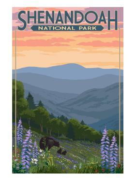 Shenandoah National Park, Virginia - Black Bear and Cubs Spring Flowers by Lantern Press