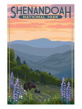 Shenandoah National Park, Virginia - Black Bear and Cubs Spring Flowers by Lantern Press