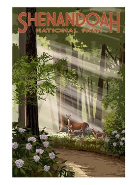 Shenandoah National Park, Virginia - Deer and Fawns by Lantern Press