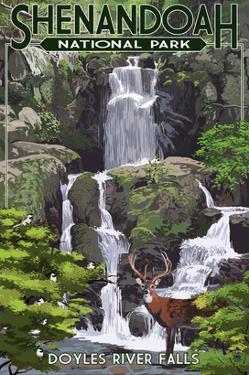 Shenandoah National Park, Virginia - Doyles River Falls by Lantern Press
