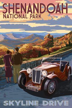 Shenandoah National Park, Virginia - Skyline Drive by Lantern Press