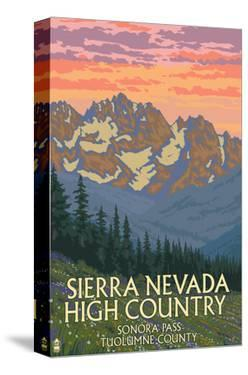 Sierra Nevada High Country - Sonora Pass, Tuolumne County, California - Spring Flowers by Lantern Press