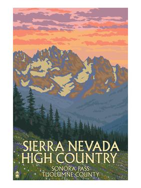 Sierra Nevada High Country - Sonora Pass, Tuolumne County, California - Spring Flowers by Lantern Press