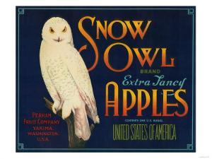 Snow Owl Apple Label - Yakima, WA by Lantern Press