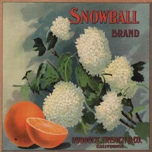 Snowball Brand - Ruddock, California - Citrus Crate Label by Lantern Press