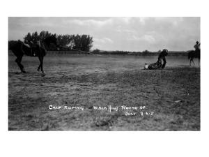 South Dakota - Calf Roping at Black Hills Round-Up by Lantern Press