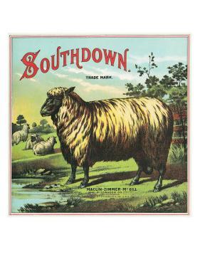 Southdown Brand Tobacco Label by Lantern Press