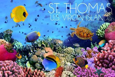 St. Thomas, U.S. Virgin Islands - Underwater Coral by Lantern Press
