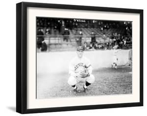 Steve O'Neill, Cleaveland Indians, Baseball Photo - Cleveland, OH by Lantern Press