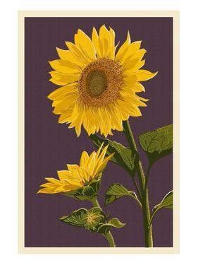 Sunflowers by Lantern Press