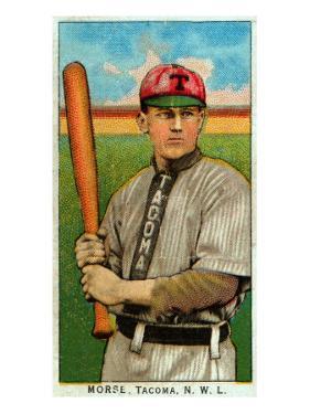 Tacoma, WA, Tacoma Northwestern League, Morse, Baseball Card by Lantern Press