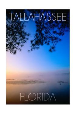 Tallahassee, Florida - Lake Lafayette by Lantern Press