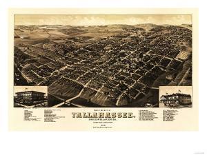 Tallahassee, Florida - Panoramic Map by Lantern Press