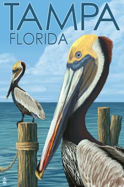 Tampa, Florida - Pelicans by Lantern Press