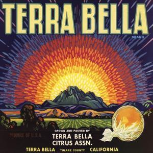 Terra Bella Brand - Terra Bella, California - Citrus Crate Label by Lantern Press
