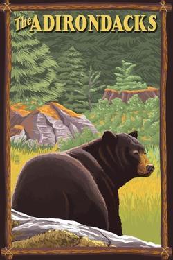 The Adirondacks - Black Bear in Forest by Lantern Press