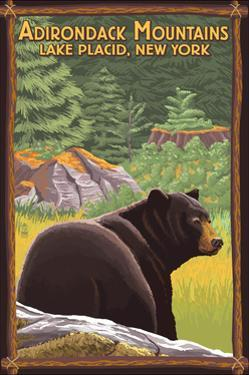 The Adirondacks - Lake Placid, New York - Black Bear in Forest by Lantern Press