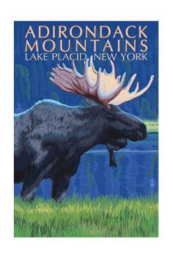 The Adirondacks - Lake Placid, New York State - Moose at Night by Lantern Press