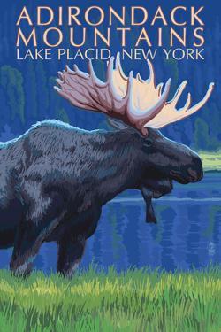 The Adirondacks - Lake Placid, New York State - Moose at Night by Lantern Press
