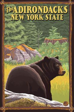 The Adirondacks, New York State - Black Bear in Forest by Lantern Press
