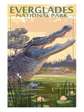 The Everglades National Park, Florida - Alligator Scene by Lantern Press