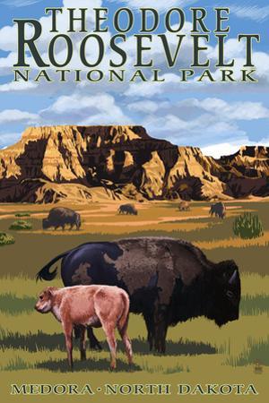 Theodore Roosevelt National Park - Medora, North Dakota - Bison and Calf
