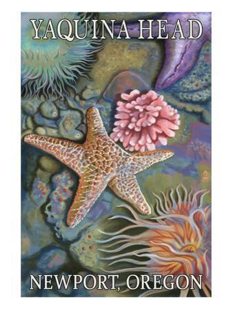 Tidepools - Yaquina Head - Newport, Oregon by Lantern Press