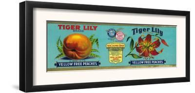 Tiger Lily Peach Label - San Francisco, CA by Lantern Press
