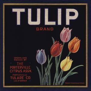 Tulip Brand - Porterville, California - Citrus Crate Label by Lantern Press