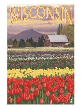 Tulip Fields - Wisconsin by Lantern Press
