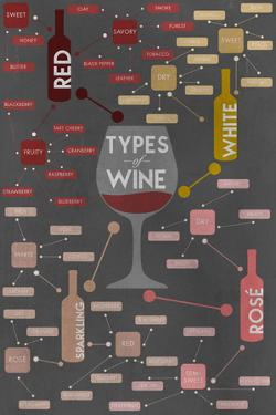 Types of Wine Infographic by Lantern Press