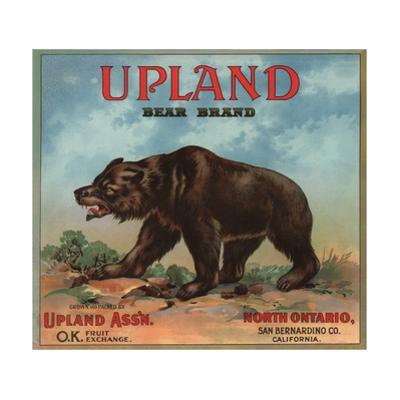 Upland Bear Brand - North Ontario, California - Citrus Crate Label by Lantern Press