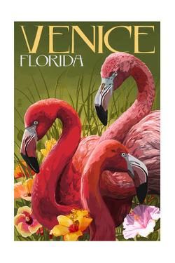 Venice, Florida - Flamingos by Lantern Press