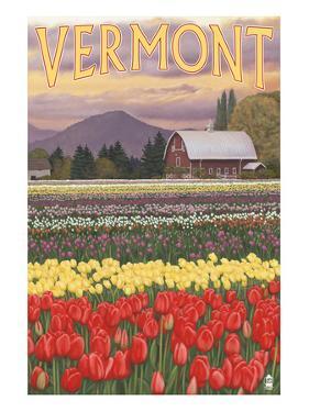 Vermont - Tulip Fields by Lantern Press