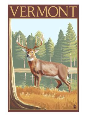 Vermont - White-Tailed Deer by Lantern Press