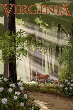 Virginia - Deer Family by Lantern Press