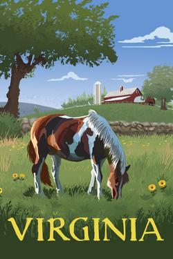 Virginia - Horse in Field by Lantern Press