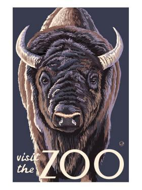 Visit the Zoo, Bison Up Close by Lantern Press