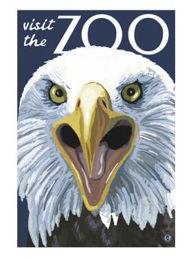 Visit the Zoo, Eagle Up Close by Lantern Press