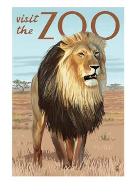 Visit the Zoo, Lion Scene by Lantern Press