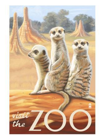 Visit the Zoo, Meerkats Scene by Lantern Press