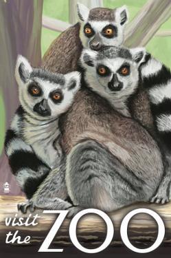 Visit the Zoo, Ring Tailed Lemurs by Lantern Press