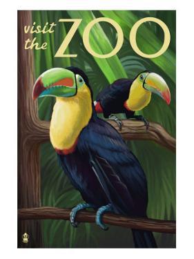 Visit the Zoo, Tucan Scene by Lantern Press