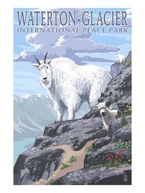Waterton-Glacier International Peace Park - Mountain Goat and Baby by Lantern Press