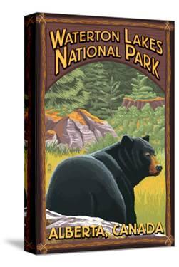 Waterton Lakes National Park, Canada - Bear in Forest by Lantern Press