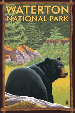 Waterton National Park, Canada - Bear in Forest by Lantern Press