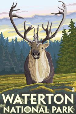 Waterton National Park, Canada - Caribou by Lantern Press