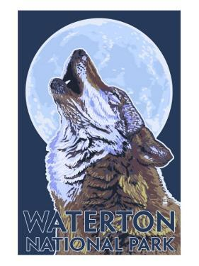 Waterton National Park, Canada - Wolf Howling by Lantern Press